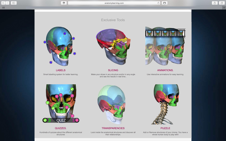 Diagnostik – Radiologische Anatomie [Diagnosis – Radiographic ...